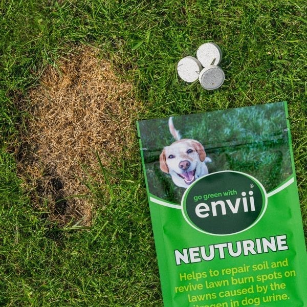Envii Neuturine packet and tablets laid on grass by side of dog urine burn brown spot