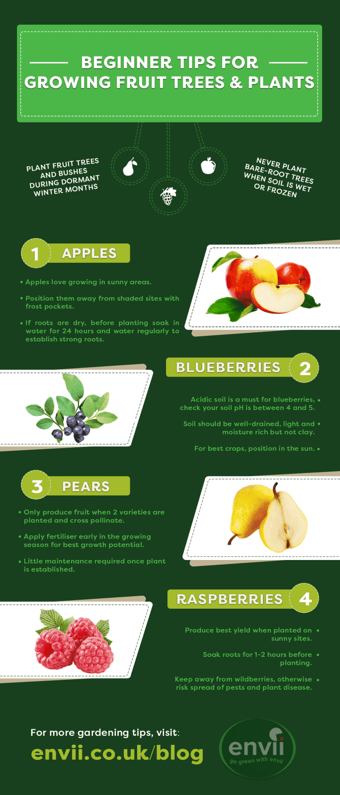 growing fruit trees and plants infographic