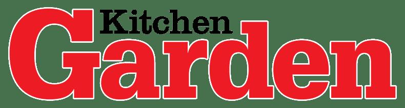 Envii Magazine
