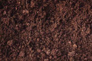 Fertile Loam soil